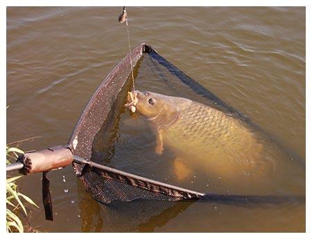 rybaření Skřípov